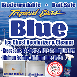 Blue Ice Chest Deodorizer & Cleaner